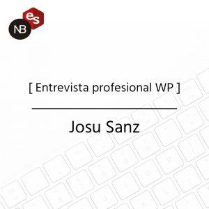 Entrevista profesional WP - Josu Sanz